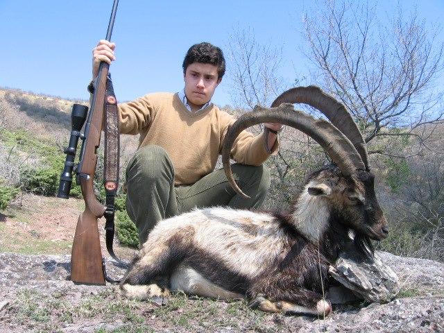 Hunting essays